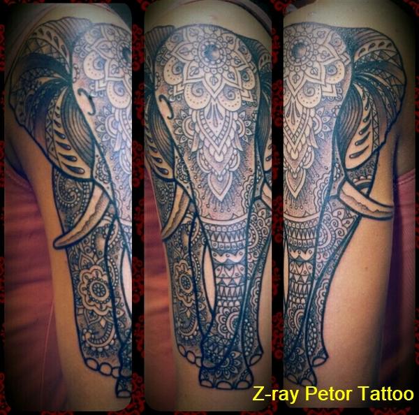petor-338