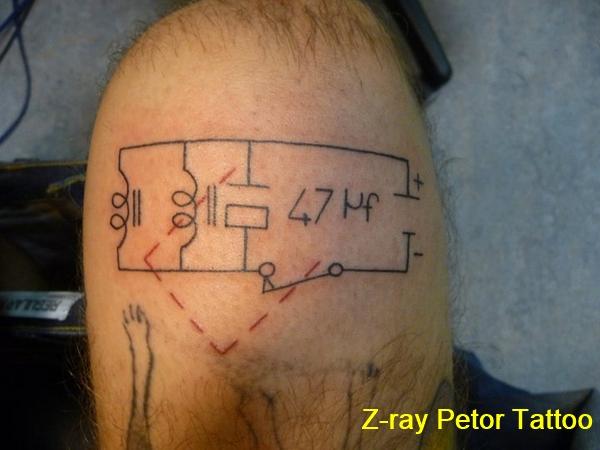 petor-355