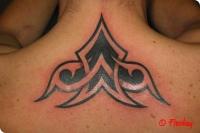 tribal_maori_96