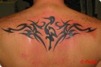 tribal_maori_98